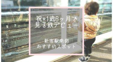 電車がたくさん見える新宿駅!子どもの見る鉄デビューは新宿駅がオススメ